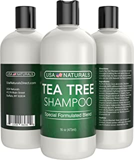 Tea Tree Oil Shampoo Sulfate-Free: Revitalize Hair, Combat Hair Loss and Cleanse Scalp with Naturally-Sourced Ingredients - Pure Tea Tree Oil & Organic Argan Oil (A. Tea Tree Oil Shampoo, 16oz)
