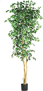 Best large green tree Reviews