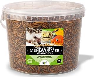 UGF – Les vers de Farine séchés Premium, Seau de 3 litres, collation d'Insectes pour Oiseaux Sauvages, Hamsters, hérisson...