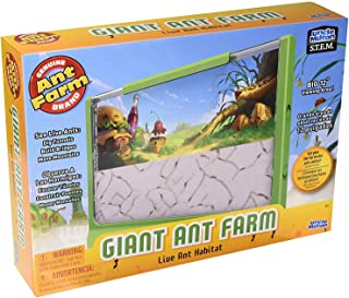 Uncle Milton Giant Ant Farm - Large Viewing Area - Care for Live Ants - Nature Learning Toy