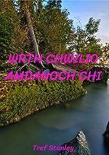 Wrth chwilio amdanoch chi (Welsh Edition)