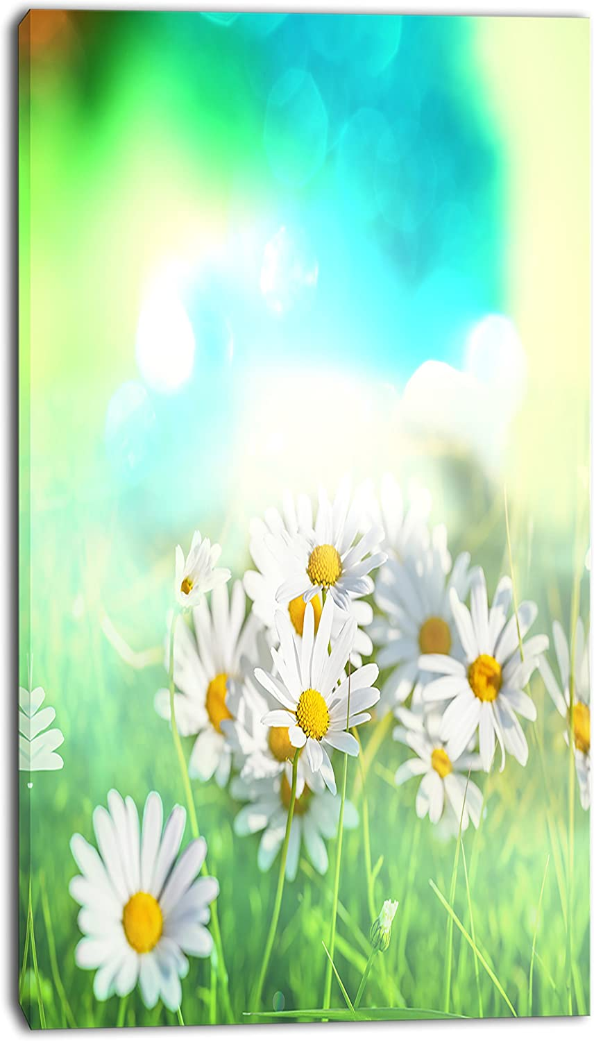 Designart PT124661632 Chamomiles on Abstract Backgroundfloral Artwork on Canvas, 16x32
