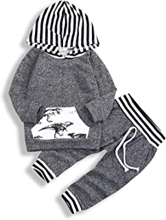 Toddler Infant Baby Boys Girls Dinosaur Long Sleeve Hoodie Tops Sweatsuit Pants Outfit Set