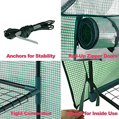 Mini Walk-in Greenhouse Indoor Outdoor -2 Tier 8 Shelves- Portable Plant Gardening Greenhouse (57L x 57W x 77H Inches), Grow