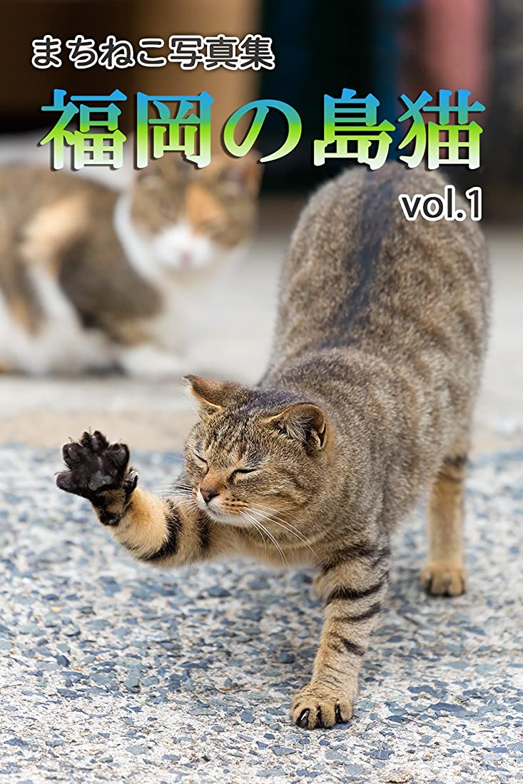 マングルあたり測るまちねこ写真集?福岡の島猫 vol.1 どうぶつZOO館