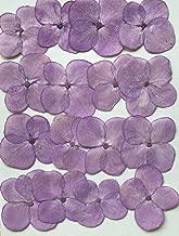 FUJION(富士山) 压花包装 紫 FUK-1035