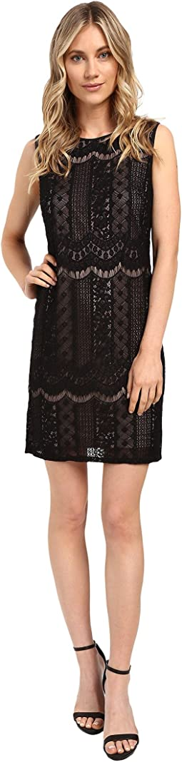 Adrianna Papell Striped Lace Shift Dress
