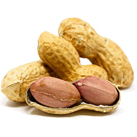 Sky | Premium USA Grown, Raw Peanuts in Shell For Squirrels, Unsalted Peanuts In The Shell, Boiled Peanuts, Jumbo Raw Peanuts in the Shell, Squirrel Peanuts in Shell Unsalted, Whole Peanuts for Squirrels, Unsalted Peanuts for Birds and Squirrels, Bulk Peanuts in Shell for Squirrels, Green Peanuts, Bird Peanuts In Shell (In Shell, 2.5lb)