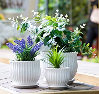 Nattol Ceramic Flower Plant Pots with Saucers, Modern Round Ceramic Succulent Planter Pots with White Stripe Texture, Small to Medium Sized, Set of 3