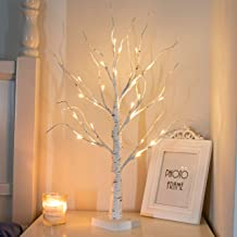 """PEIDUO 24"""" 2FT 24LT Lighted Birch Tree Battery Powered Timer Warm White LED Artificial Branch Tree for Home Party Festival..."""