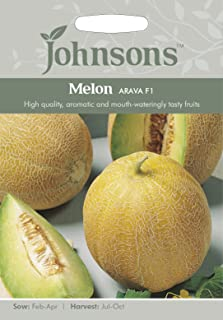 JOVE 英国ジョンソンズシード Melon Arava F1 メロン・アラヴァ・F1