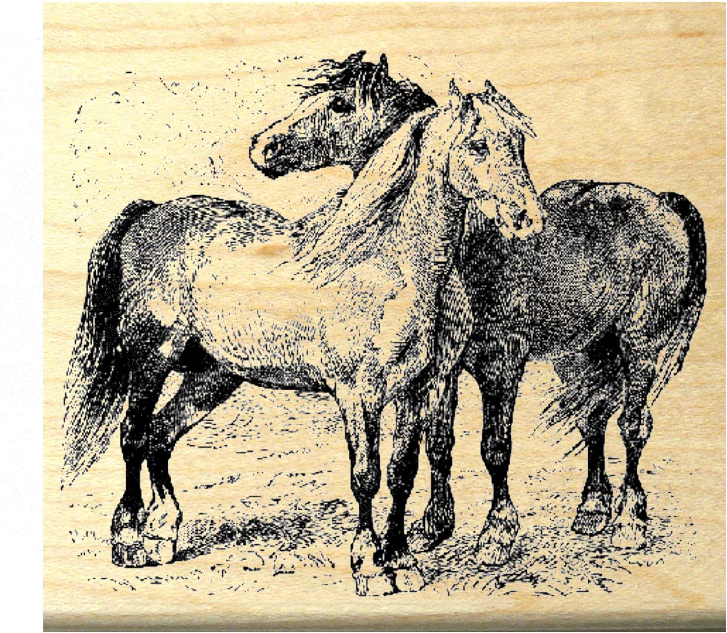 3 Horse Horses New Mounted Rubber Stamp Stamps