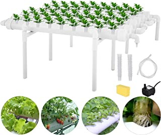 DreamJoy 1 Layers 54 Plant Sites Hydroponic Site Grow Kit 6 Pipes Hydroponic Growing System Water Culture Garden Plant System for Leafy Vegetables Lettuce Herb Celery Cabbage