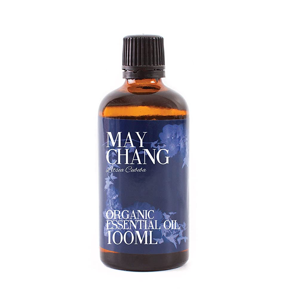 科学的騒作成するMystic Moments | Litsea Cubeba (May Chang) Organic Essential Oil - 100ml - 100% Pure