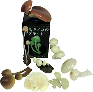 Kitan Club Luminous Mushroom Plastic Toys - Magnetic and Glow-in-the-Dark - Blind Box Includes 1 of 8 Collectable Figurines - Authentic Japanese Design - Made from Durable Plastic