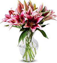 Benchmark Bouquets 8 Stem Stargazer Lily Bunch, With Vase (Fresh Cut Flowers)