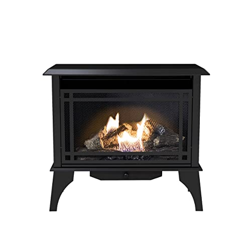 Free Standing Gas Fireplace Amazon Com