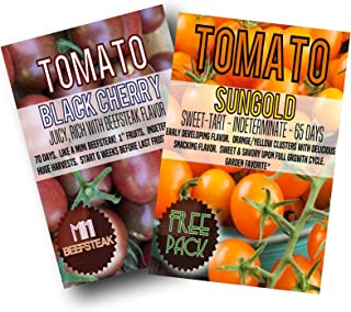Heirloom Black Cherry Tomato Seeds (200) + Bonus Pack of Your Choice (Free Sungold)