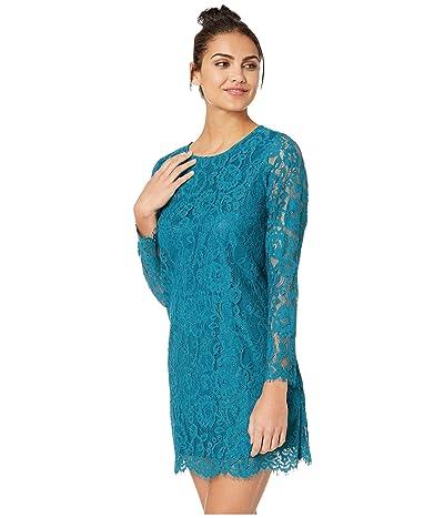 kensie Winter Lace Dress KSDK8321 (Frosted Aqua) Women