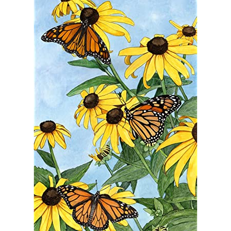 Amazon Com Toland Home Garden Coneflowers And Monarchs 12 5 X 18 Inch Decorative Spring Butterfly Flowers Watercolor Garden Flag Garden Outdoor