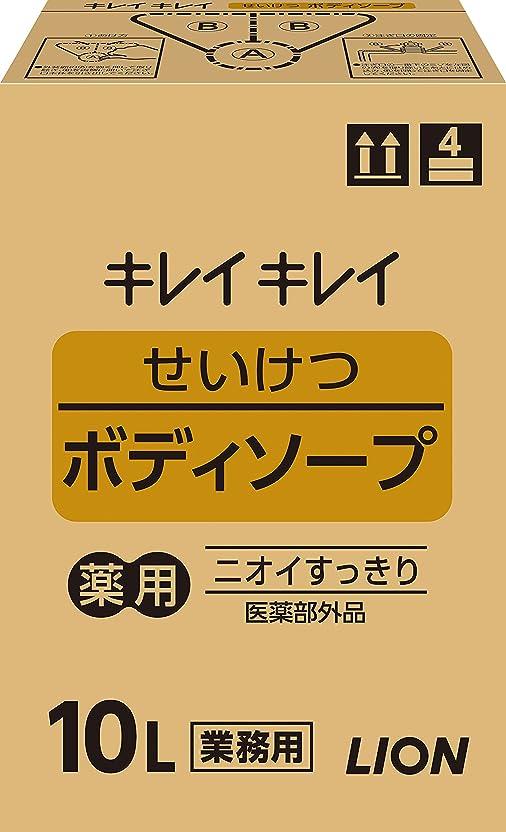 アシストマインドフル電極キレイキレイ せいけつボディソープ さわやかなレモン&オレンジの香り 業務用 10L