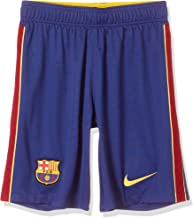 Nike Heren Fcb Breathe Stadium Ha Shorts