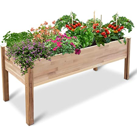 """Jumbl Raised Canadian Cedar Garden Bed   Elevated Wood Planter for Growing Fresh Herbs, Vegetables, Flowers, Succulents & Other Plants at Home   Great for Outdoor Patio, Deck, Balcony   72x23x30"""""""