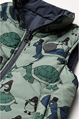 Ink/Turtle