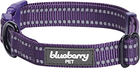 Blueberry Pet 6 Colors Safe & Comfy 3M Reflective Classic Solid Color Dog Collars or Leashes