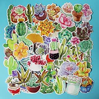 Girl Super Cute Watercolor Cactus and Succulent Plants Stickers Water Bottle Skateboard Motorcycle Phone Bicycle Luggage Guitar Bike Sticker Decal 70pcs Pack (Succulent Plants)