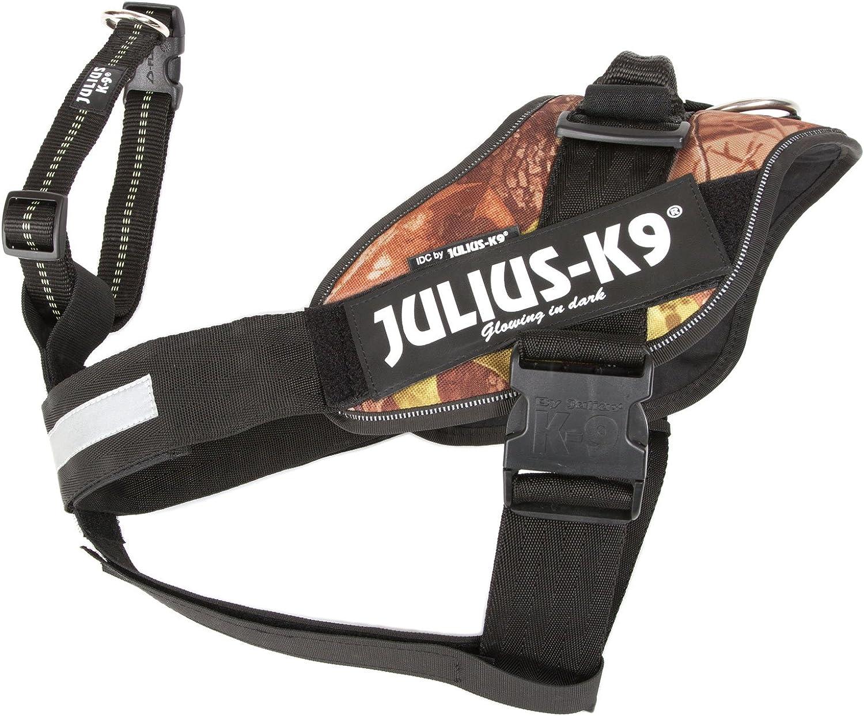 Julius K9 162bgi S I Gurt 2011 Schutzhund Sicherungssgurt Für 7 23 Kg Hunde Schwarz Haustier