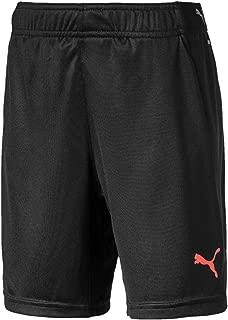 PUMA Kids FTBLNXT Shorts
