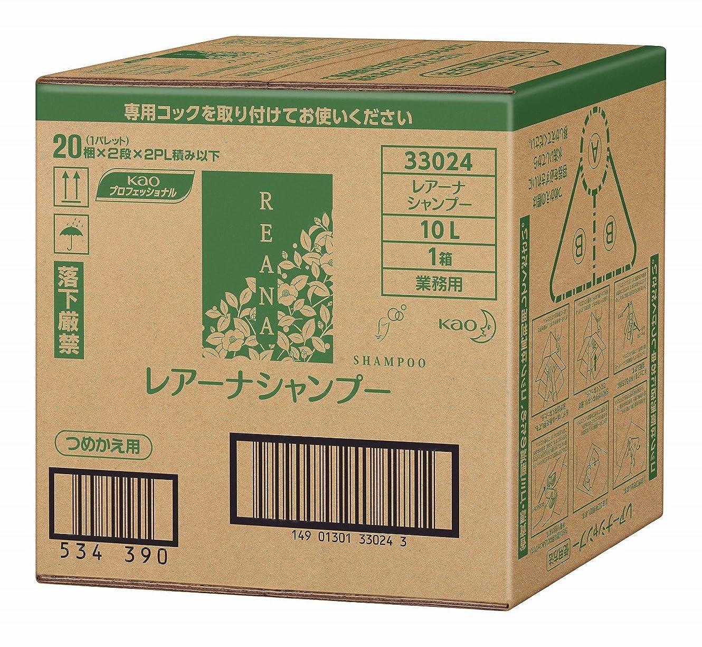 ランドリー変色する説明的花王 レアーナ シャンプー 10L