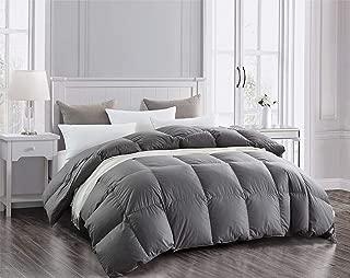 Best reversible down comforter Reviews