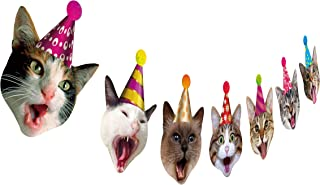 Birthday Cat Garland, Photographic Cat Faces Birthday Banner, Kitties Bday Party Bunting Decoration