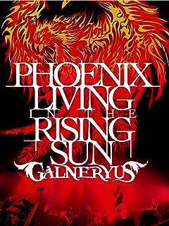 PHOENIX LIVING IN THE RISING SUN [DVD]