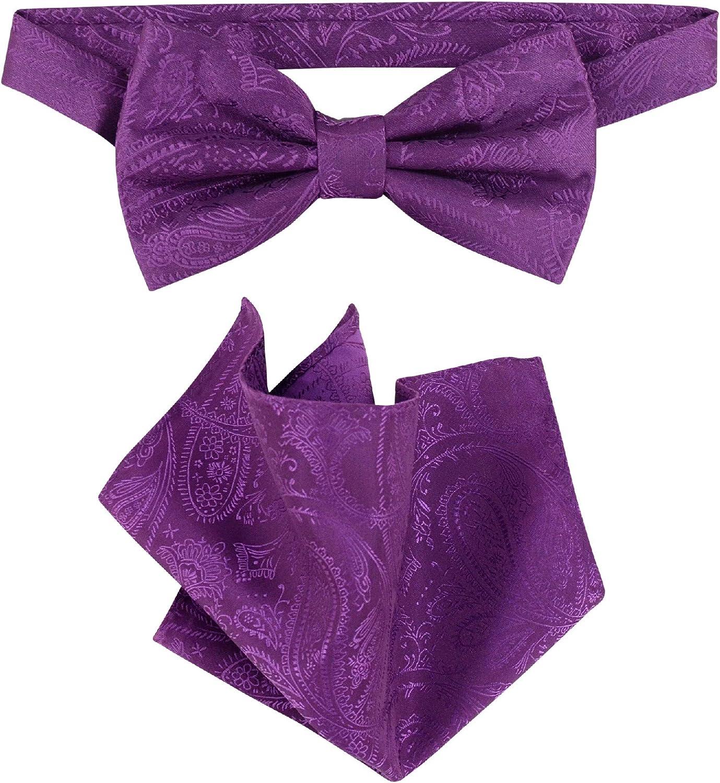 Vesuvio Napoli BowTie Eggplant Purple Color Paisley Mens Bow Tie & Handkerchief