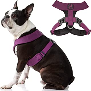 Gooby Dog Harness - Purple, Small - Comfort X Harness Dual Snap Rotational Buckles with Patented Choke-Free X Frame - Perf...