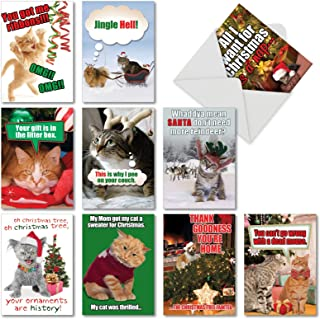 10 Assorted PetiGreet Cats Christmas Boxed and Funny Cat Christmas Cards w/ Envelopes - Ten Different Merry Xmas Designs Hilarious Variety Box for Seasons Greetings and Happy Holidays A5559XSG-B1x10