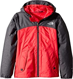 e786e1f2eba4 The North Face Kids. Brianna Insulated Jacket (Little Kids Big Kids).   83.10MSRP   150.00. Atomic Pink