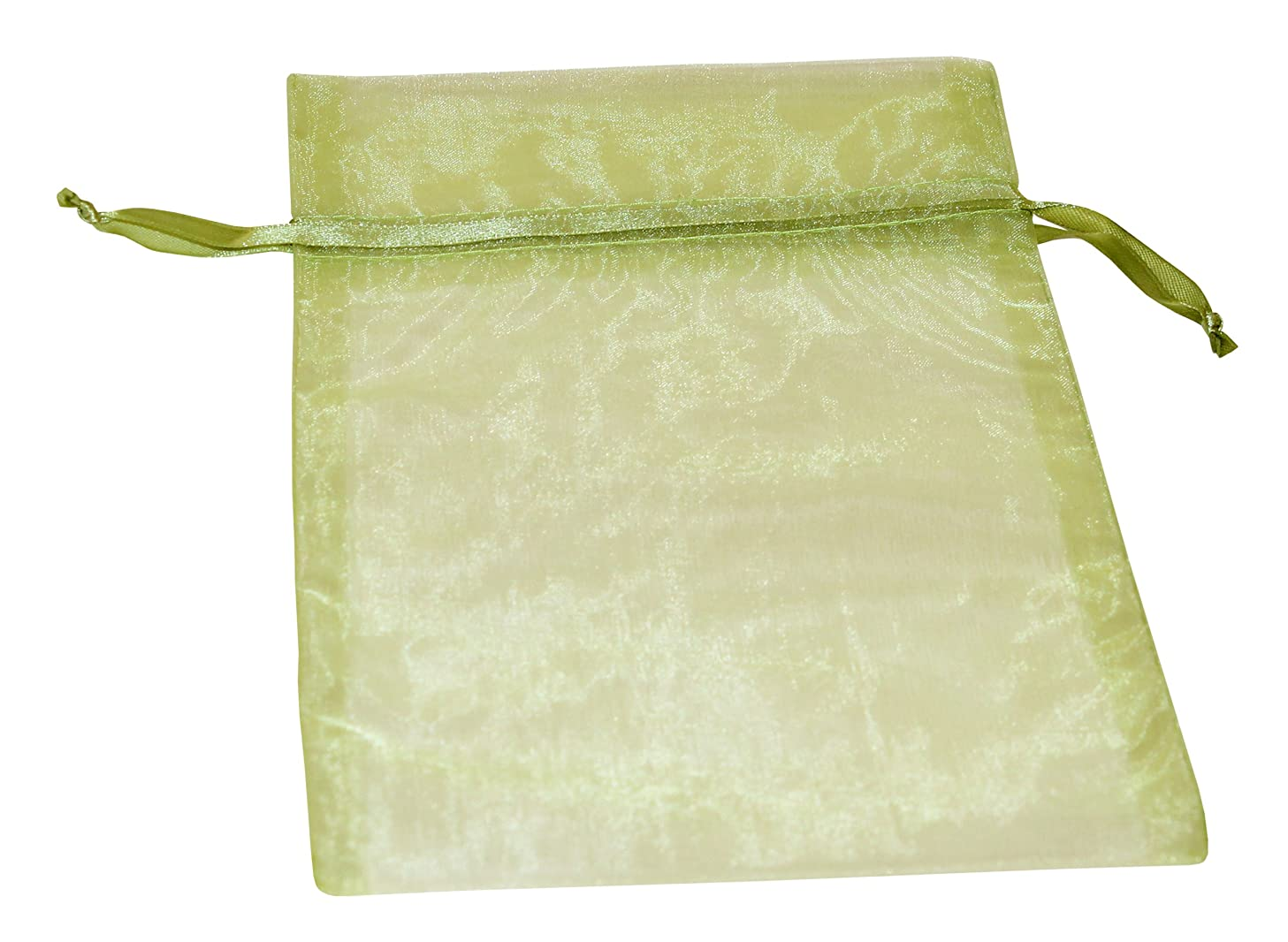 Premier Packaging AMZ-399934 20 Count Organza Bags, 6 by 10-Inch, Lime