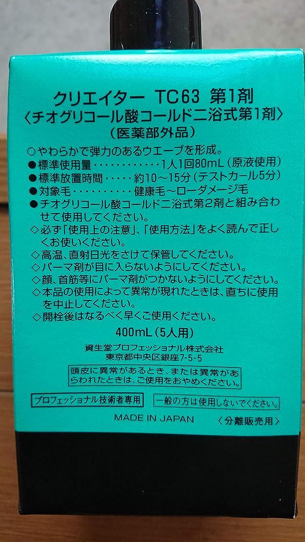 子猫地中海熱資生堂 クリエイター TC63(プロ用パーマ液?1剤、2剤各400ml)