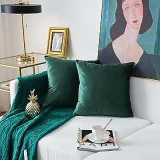 NATUS WEAVER Pack of 2,Velvet Soft Soild Decorative Square Throw Pillow Cover Set Cushion Case for Sofa Office Car 22 x 22 Inch 55 x 55 cm