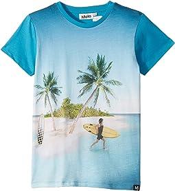 Surf Surprise