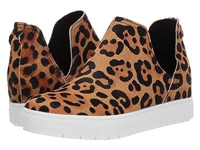 Steven Capricel Sneaker (Leopard) Women
