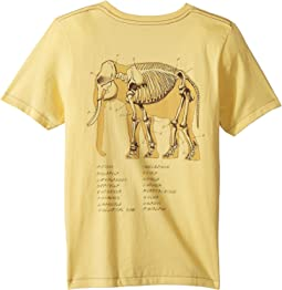 Elephant Tee (Toddler/Little Kids/Big Kids)