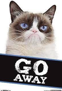 RACHEL CALDWELL 22x34-17787 PURR CAT POSTER