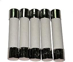 Divine Lighting 5 Qty. MDA 20A Slow-Blow Ceramic Fuse 20 Amp 250v MDA20A,MDA20