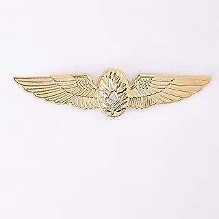 flight surgeon wings