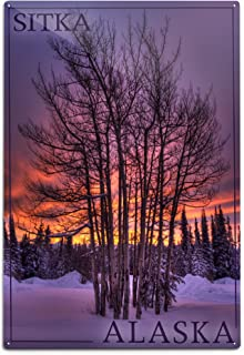 Lantern Press Sitka, Alaska - Tree in Snow (12x18 Aluminum Wall Sign, Wall Decor Ready to Hang)